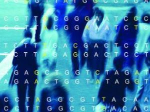 gran_genetica-sociedad