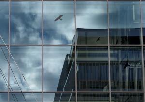 architecture-1300944_960_720